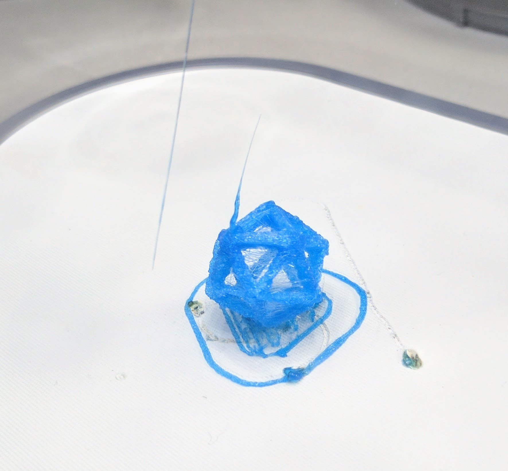 tiko-first-print-of-included-model